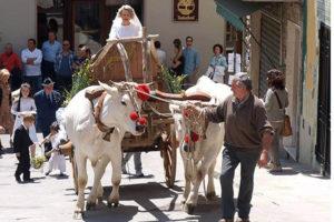 Folclore e enogastronomia nel fine settimana de La valle del Gigante Bianco
